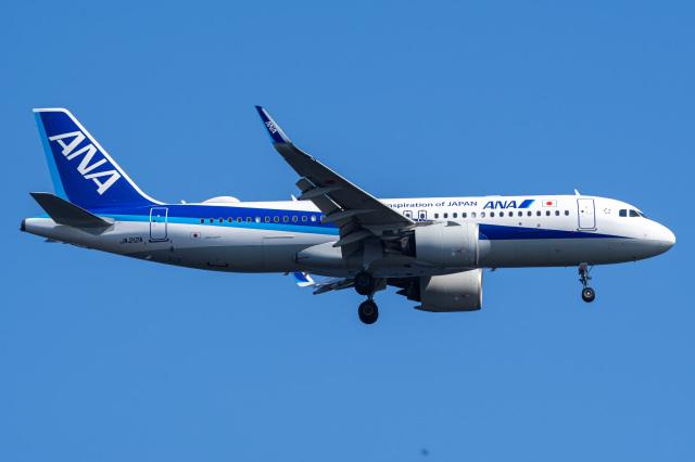 Tatsuya.Kさんが、羽田空港で撮影した全日空 A320-271Nの航空フォト(飛行機 写真・画像)