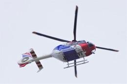 mild lifeさんが、伊丹空港で撮影した毎日新聞社 EC135T1の航空フォト(飛行機 写真・画像)