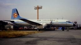 航空見聞録さんが、伊丹空港で撮影した日本近距離航空 YS-11A-208の航空フォト(飛行機 写真・画像)