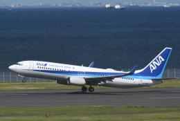 チャーリーマイクさんが、羽田空港で撮影した全日空 737-881の航空フォト(飛行機 写真・画像)