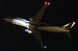 航空フォト:VQ-BFX アトラン・アヴィアトランス・カーゴ・エアラインズ 737-800