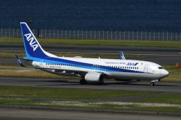 チャーリーマイクさんが、羽田空港で撮影した全日空 737-8ALの航空フォト(飛行機 写真・画像)