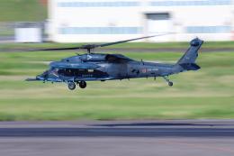 とらまるさんが、名古屋飛行場で撮影した航空自衛隊 UH-60Jの航空フォト(飛行機 写真・画像)