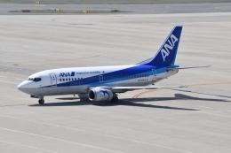 hachiさんが、中部国際空港で撮影したANAウイングス 737-54Kの航空フォト(飛行機 写真・画像)