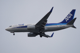 TOPAZ102さんが、伊丹空港で撮影した全日空 737-781の航空フォト(飛行機 写真・画像)