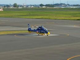 Smyth Newmanさんが、札幌飛行場で撮影した北海道航空 AS365N3 Dauphin 2の航空フォト(飛行機 写真・画像)