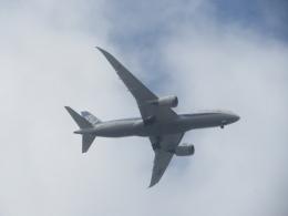 commet7575さんが、福岡空港で撮影した全日空 787-8 Dreamlinerの航空フォト(飛行機 写真・画像)