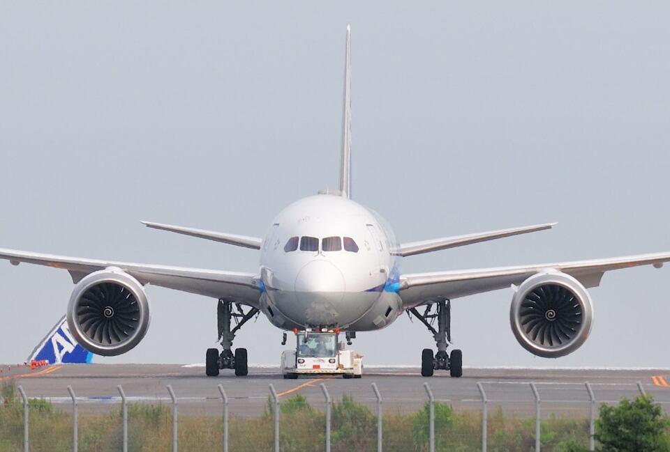 シグナス021さんの全日空 Boeing 787-8 Dreamliner (JA801A) 航空フォト