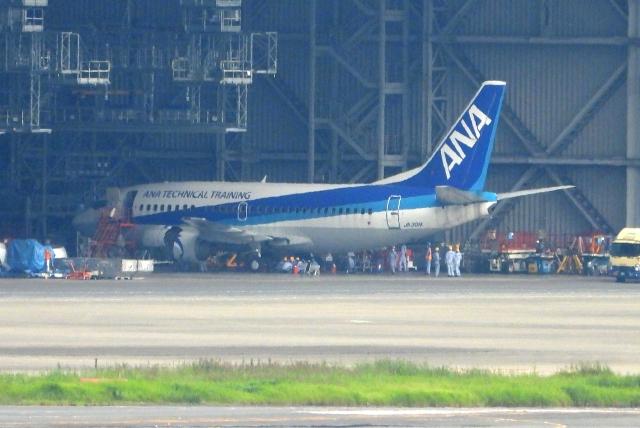 チャレンジャーさんが、羽田空港で撮影したANAウイングス 737-54Kの航空フォト(飛行機 写真・画像)