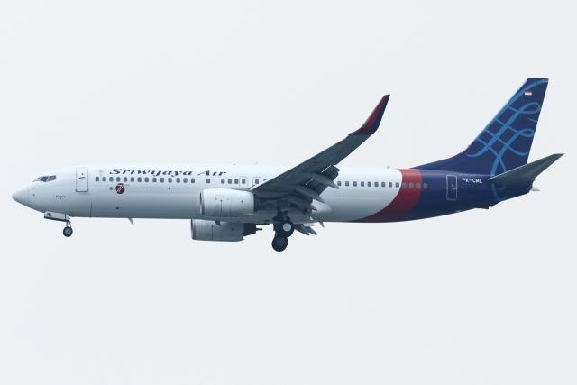 kinsanさんが、スカルノハッタ国際空港で撮影したスリウィジャヤ航空 737-809の航空フォト(飛行機 写真・画像)