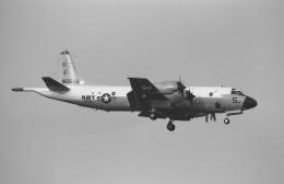 Night Owlさんが、厚木飛行場で撮影したアメリカ海軍 P-3C Orionの航空フォト(飛行機 写真・画像)