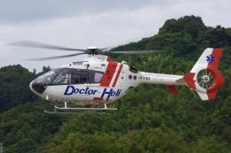 ラムさんが、静岡ヘリポートで撮影した中日本航空 EC135P2の航空フォト(飛行機 写真・画像)