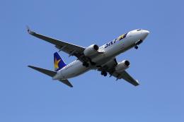 VFRさんが、羽田空港で撮影したスカイマーク 737-86Nの航空フォト(飛行機 写真・画像)