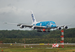 Cygnus00さんが、新千歳空港で撮影した全日空 A380-841の航空フォト(飛行機 写真・画像)