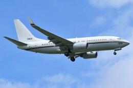 デルタおA330さんが、嘉手納飛行場で撮影したアメリカ海軍 C-40A(737-7AF)の航空フォト(飛行機 写真・画像)