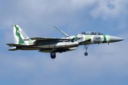 Flankerさんが、小松空港で撮影した航空自衛隊 F-15DJ Eagleの航空フォト(飛行機 写真・画像)