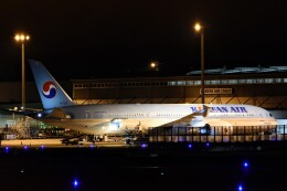 M.Tさんが、関西国際空港で撮影した大韓航空 787-9の航空フォト(飛行機 写真・画像)