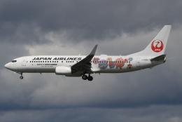 航空フォト:JA329J 日本航空 737-800