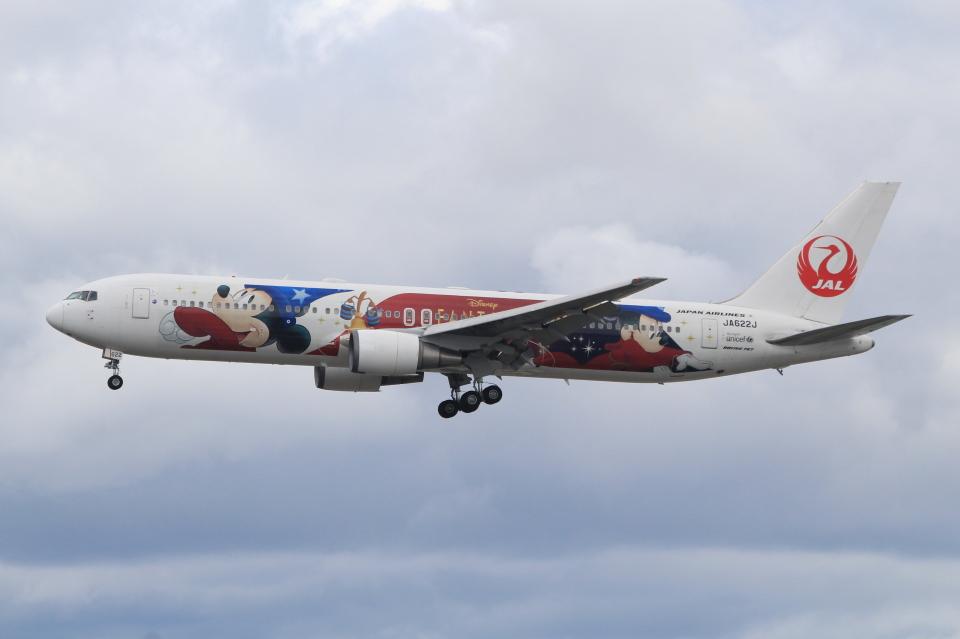 キイロイトリさんの日本航空 Boeing 767-300 (JA622J) 航空フォト