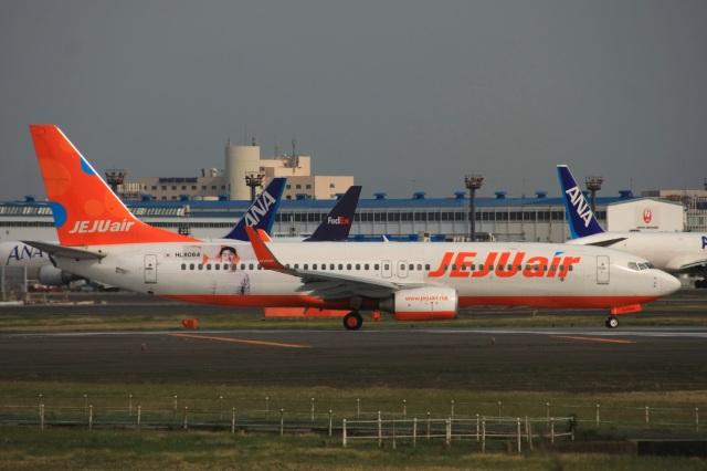 S.Hayashiさんが、成田国際空港で撮影したチェジュ航空 737-8ASの航空フォト(飛行機 写真・画像)