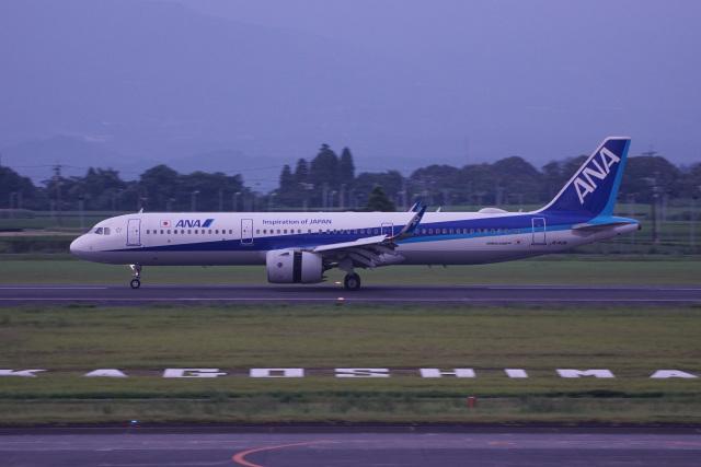 神宮寺ももさんが、鹿児島空港で撮影した全日空 A321-272Nの航空フォト(飛行機 写真・画像)