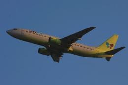 S.Hayashiさんが、関西国際空港で撮影したジンエアー 737-86Nの航空フォト(飛行機 写真・画像)