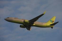 S.Hayashiさんが、関西国際空港で撮影したジンエアー 737-809の航空フォト(飛行機 写真・画像)