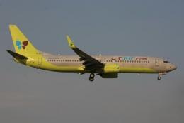 S.Hayashiさんが、成田国際空港で撮影したジンエアー 737-8SHの航空フォト(飛行機 写真・画像)