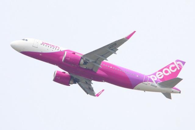 S.Hayashiさんが、成田国際空港で撮影したピーチ A320-251Nの航空フォト(飛行機 写真・画像)
