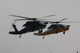 スカルショットさんが、名古屋飛行場で撮影した航空自衛隊 UH-60Jの航空フォト(飛行機 写真・画像)