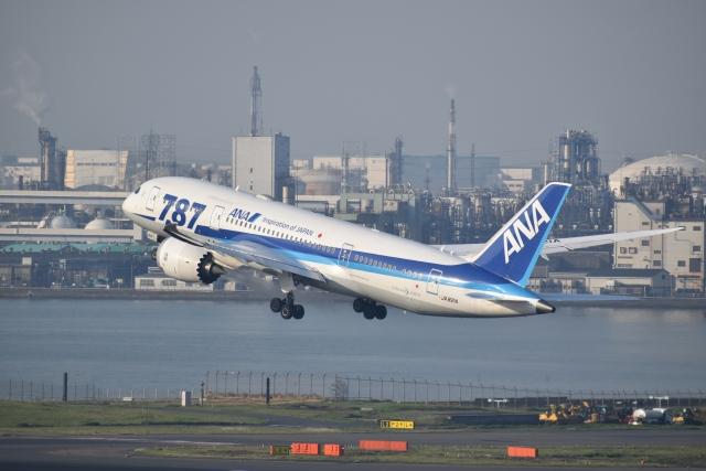 hachiさんが、羽田空港で撮影した全日空 787-8 Dreamlinerの航空フォト(飛行機 写真・画像)