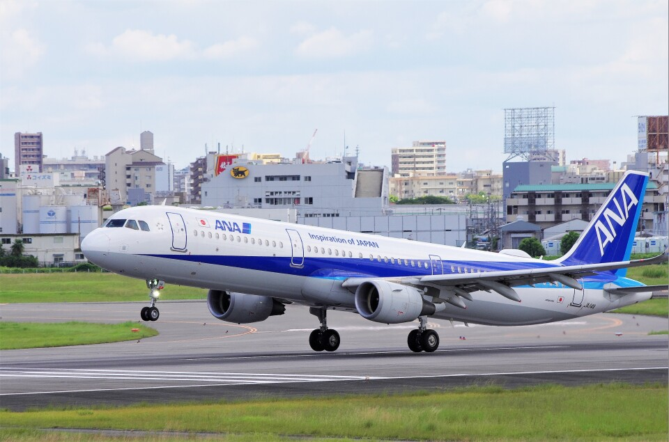 mild lifeさんの全日空 Airbus A321 (JA114A) 航空フォト