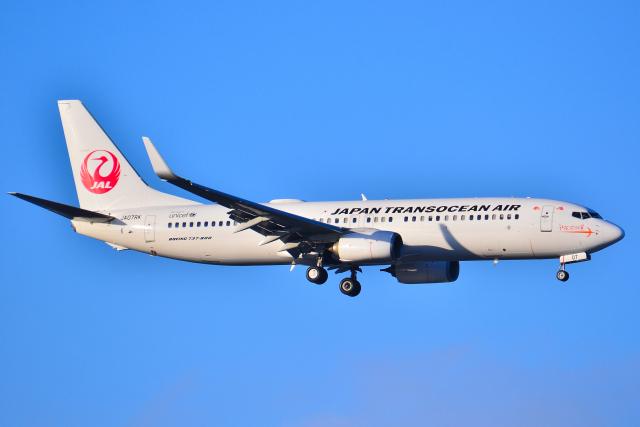 フリューゲルさんが、羽田空港で撮影した日本トランスオーシャン航空 737-8Q3の航空フォト(飛行機 写真・画像)
