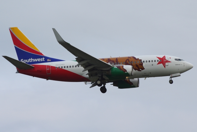 zettaishinさんが、ブラッドレー国際空港で撮影したサウスウェスト航空 737-7H4の航空フォト(飛行機 写真・画像)