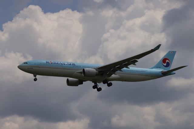 OS52さんが、成田国際空港で撮影した大韓航空 A330-323Xの航空フォト(飛行機 写真・画像)