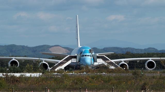 ららぞうさんが、新千歳空港で撮影した全日空 A380-841の航空フォト(飛行機 写真・画像)