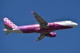 しめぎさんが、仙台空港で撮影したピーチ A320-214の航空フォト(飛行機 写真・画像)