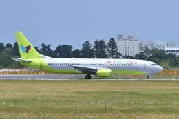 ポン太さんが、成田国際空港で撮影したジンエアー 737-86Nの航空フォト(飛行機 写真・画像)