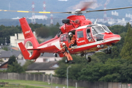 ゴンタさんが、名古屋飛行場で撮影した名古屋市消防航空隊 AS365N3 Dauphin 2の航空フォト(飛行機 写真・画像)