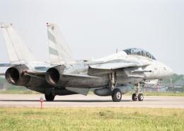 元青森人さんが、松島基地で撮影したアメリカ海軍 F-14 Tomcatの航空フォト(飛行機 写真・画像)