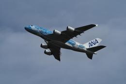 ここはどこ?さんが、新千歳空港で撮影した全日空 A380-841の航空フォト(飛行機 写真・画像)