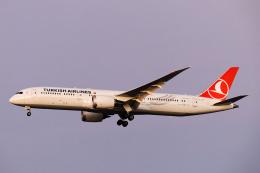 SGR RT 改さんが、羽田空港で撮影したターキッシュ・エアラインズ 787-9の航空フォト(飛行機 写真・画像)