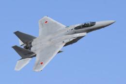 woodpeckerさんが、浜松基地で撮影した航空自衛隊 F-15J Eagleの航空フォト(飛行機 写真・画像)