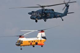 スカルショットさんが、浜松基地で撮影した航空自衛隊 UH-60Jの航空フォト(飛行機 写真・画像)