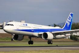 Fly Yokotayaさんが、伊丹空港で撮影した全日空 A321-272Nの航空フォト(飛行機 写真・画像)