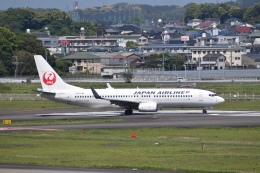 hachiさんが、宮崎空港で撮影した日本航空 737-846の航空フォト(飛行機 写真・画像)