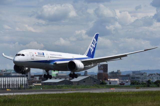 空が大好き!さんが、伊丹空港で撮影した全日空 787-8 Dreamlinerの航空フォト(飛行機 写真・画像)