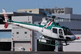 KAZFLYERさんが、東京ヘリポートで撮影したアカギヘリコプター AS350B2 Ecureuilの航空フォト(飛行機 写真・画像)
