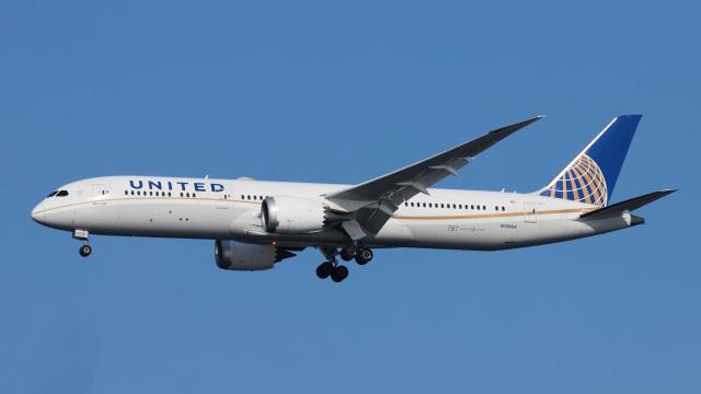 Bluewingさんが、羽田空港で撮影したユナイテッド航空 787-9の航空フォト(飛行機 写真・画像)