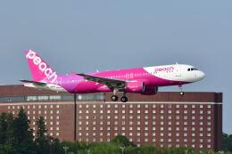 ポン太さんが、成田国際空港で撮影したピーチ A320-214の航空フォト(飛行機 写真・画像)